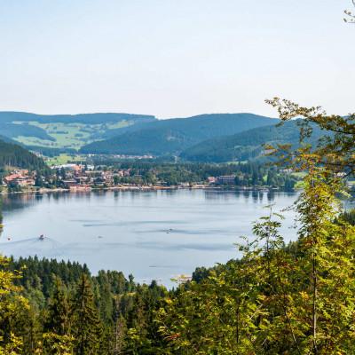Teaser zu Mit Hund in Baden-Württemberg - Das sollten Sie wissen!