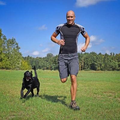 Teaser zu Sport mit Hund in Sachsen