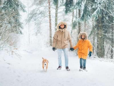 Hund und Familie im Winterwald. Urlaub mit Hund im Winter. Ein Hundurlaub mit der Familie